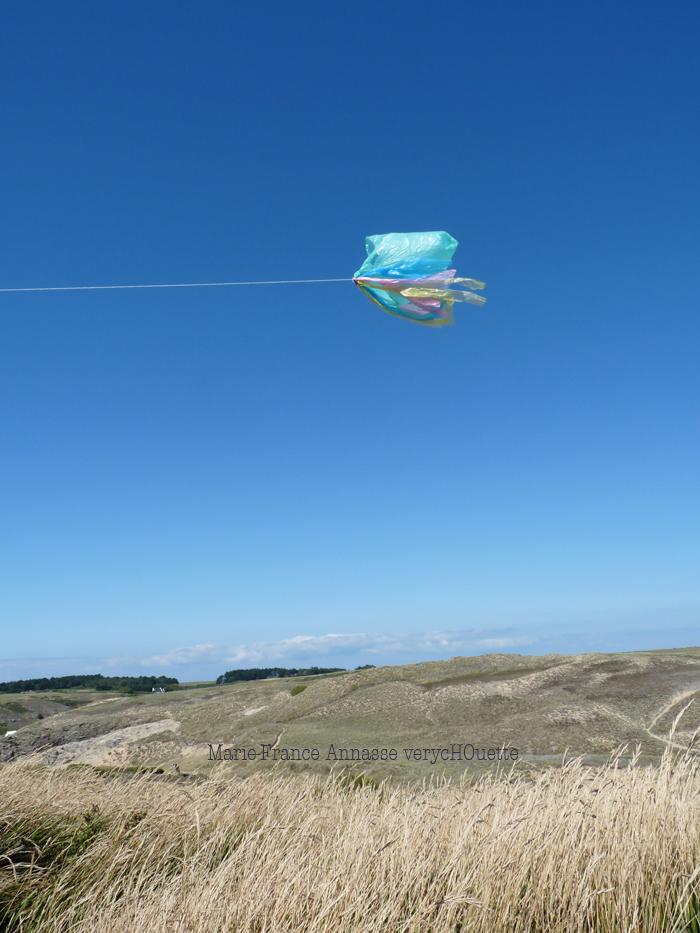 Dans le vent